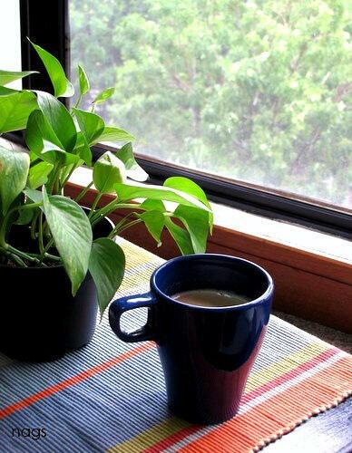 Rainy day and tea