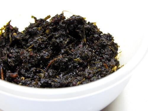Gongura Pachadi Recipe