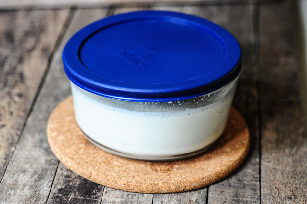 How to Make Curd-Dahi-Yogurt (Homemade Curd Recipe)