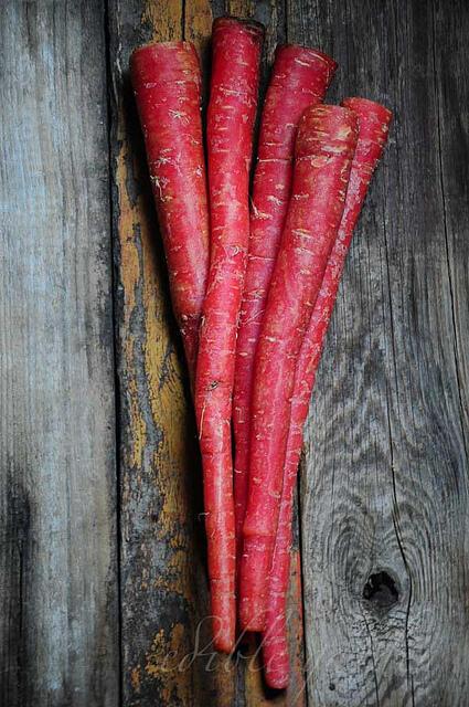 Delhi Winter Carrots