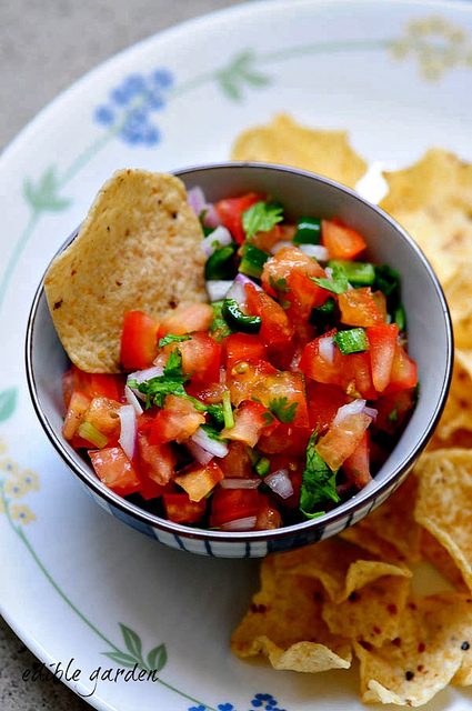 fresh chunky tomato salsa recipe